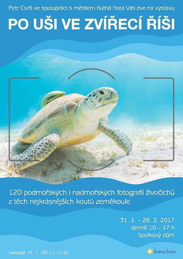 1347-170131-civis-petr-vystava-plakat.jpg