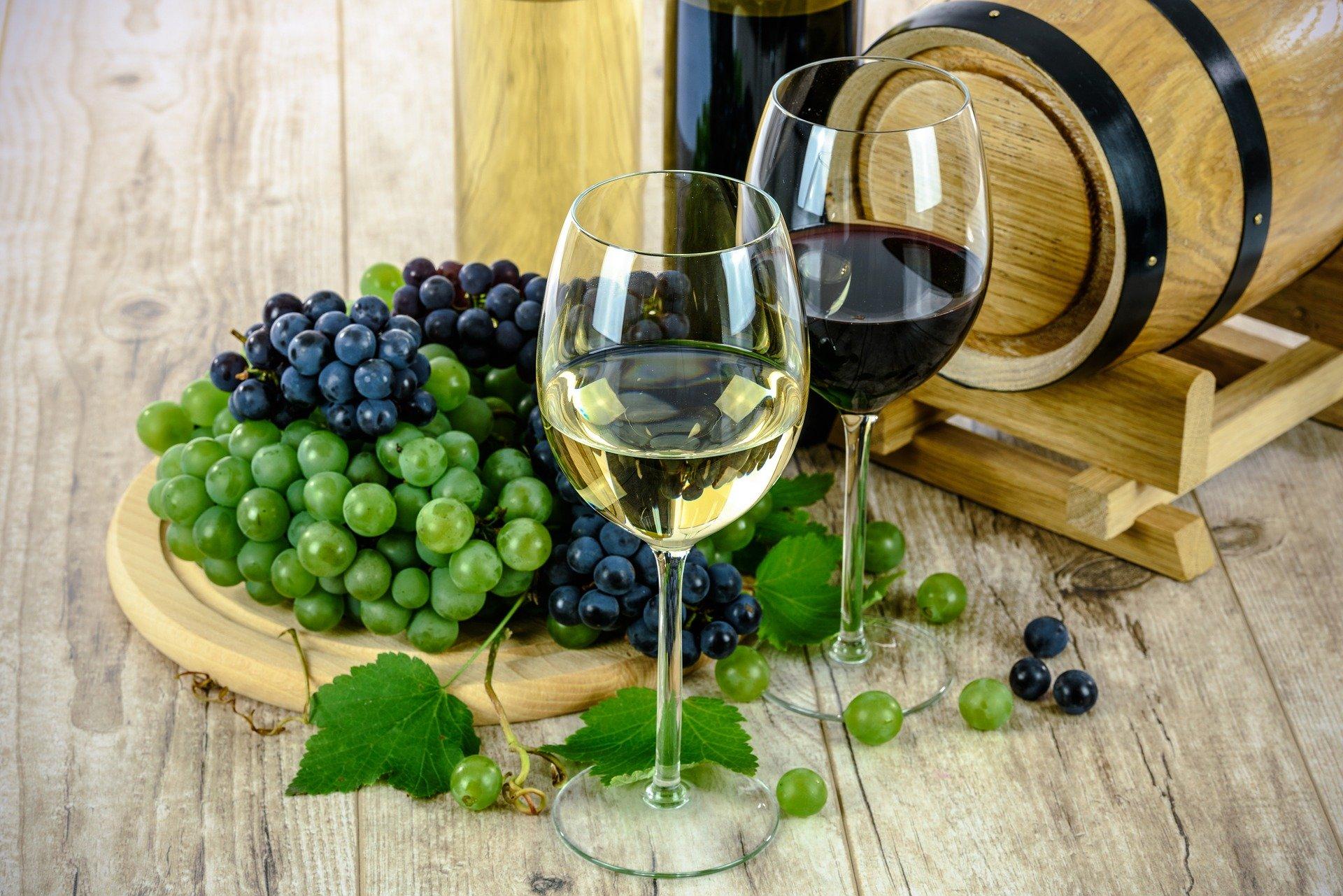 20352-wines-1761613-1920.jpg
