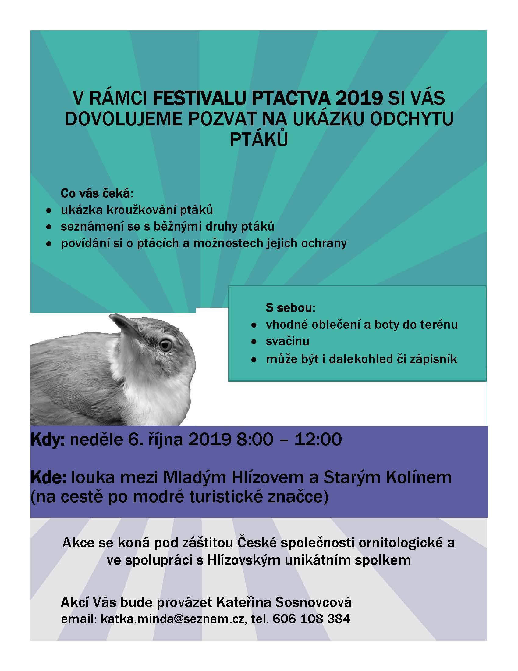 6780-pozvanka-na-festival-ptactva.jpg