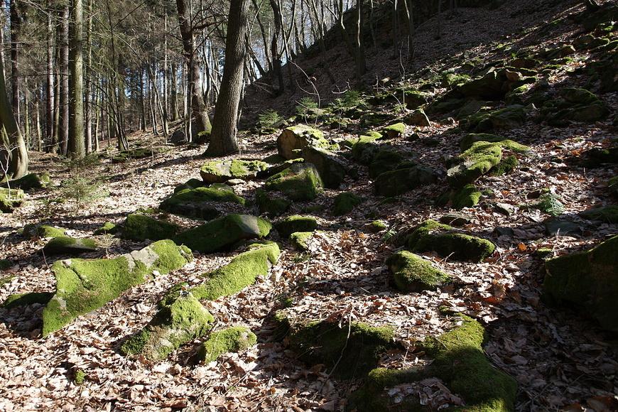 Sion - Chlístovice (2)