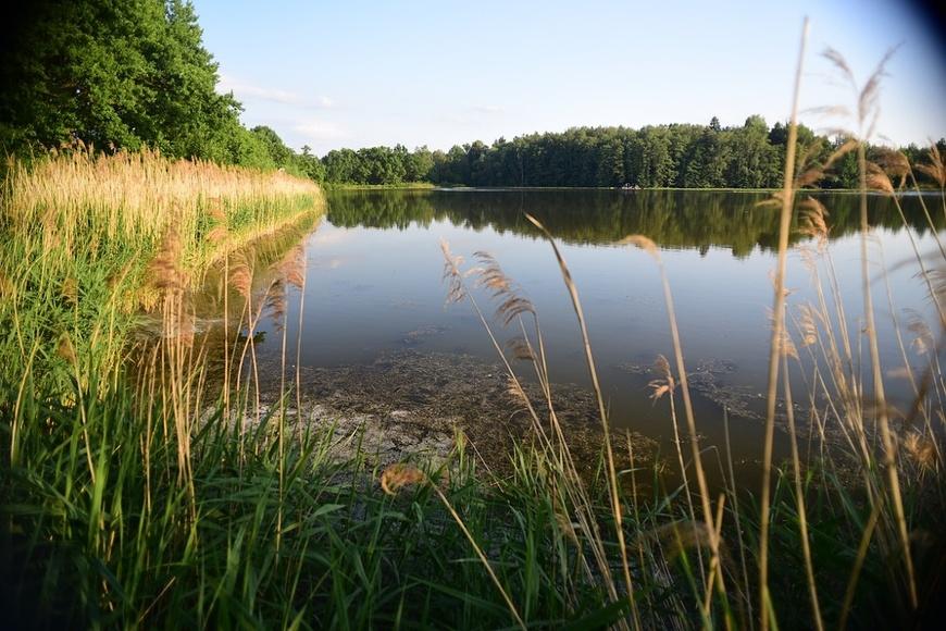 Jezero Katlov a rybník Pohan (1)