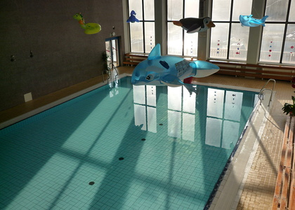 Indoor swimming stadium