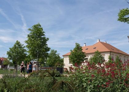 Zahrady Jezuitské koleje (2)